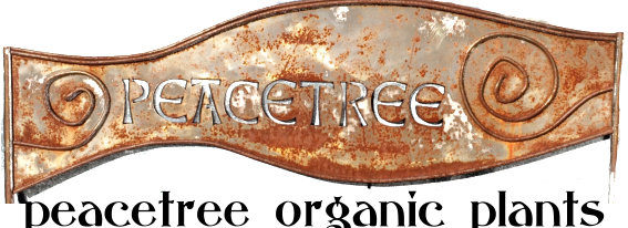peacetree organic plants